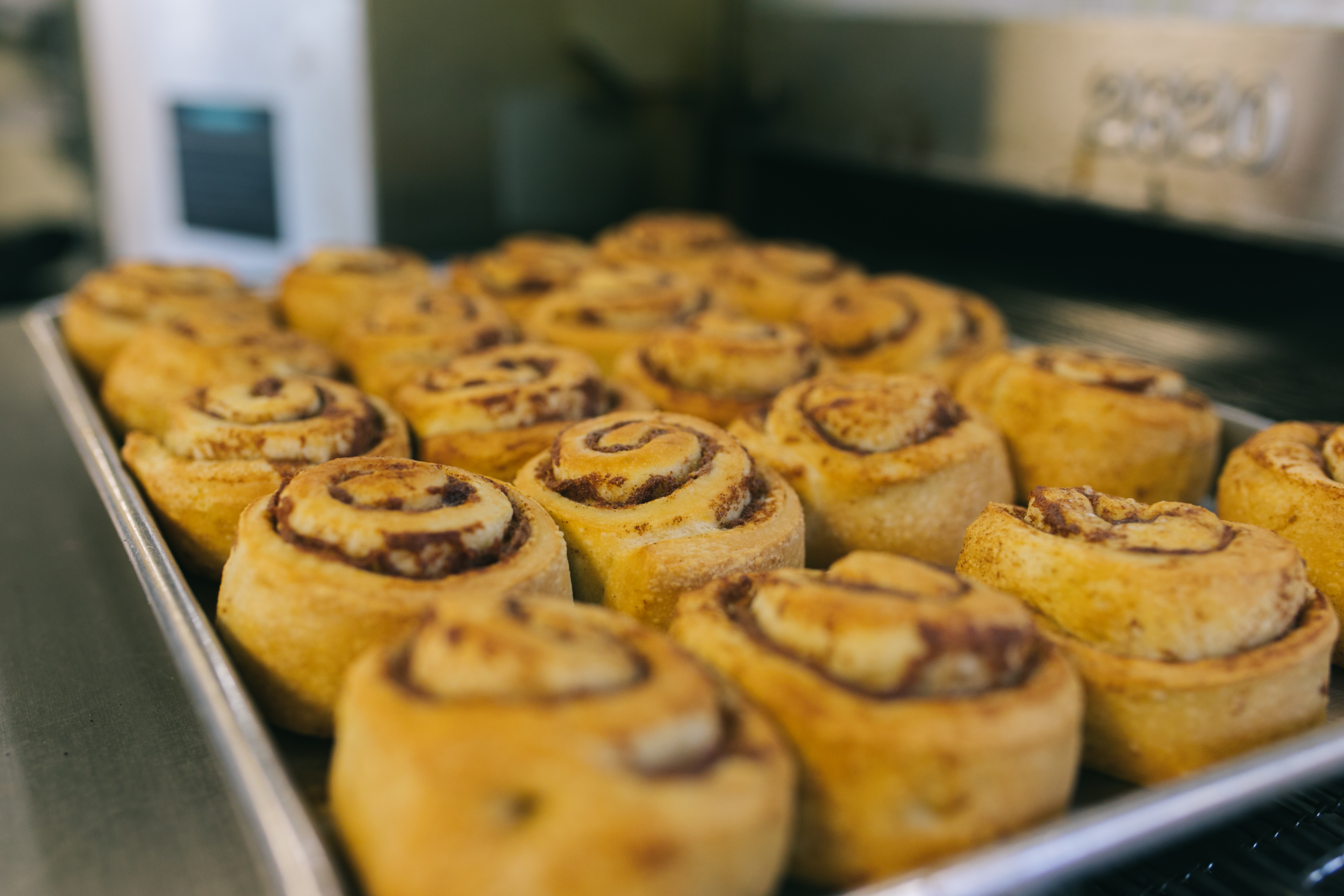 Pre-decorated cinnamon rolls on a tray